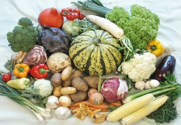 Povrće - Page 3 HERBST1-580x400